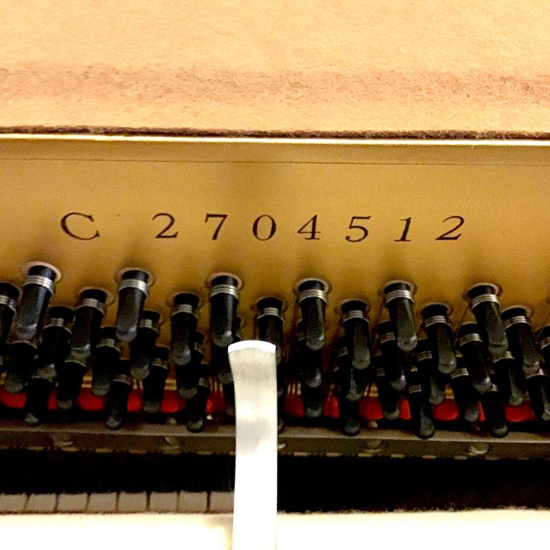Yamaha C type en serienummer
