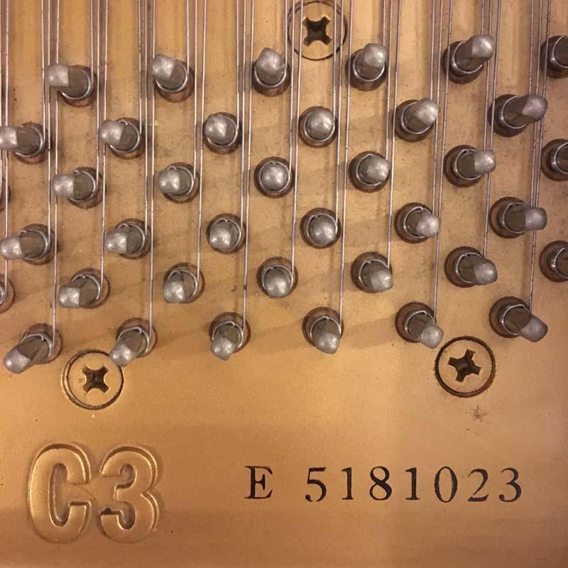Yamaha C3ED type en serienummer