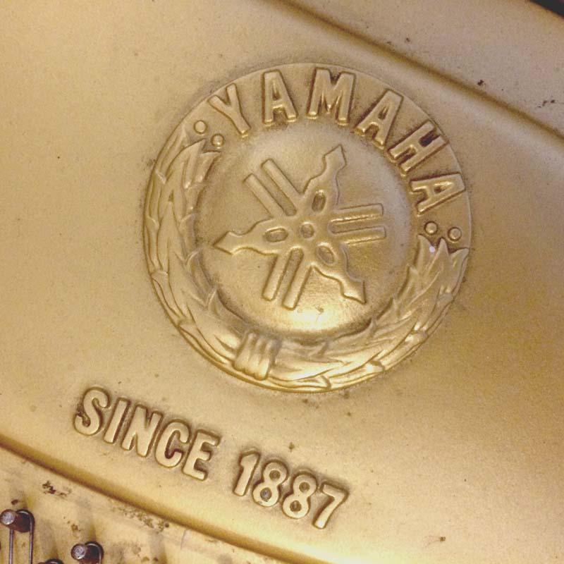 Yamaha G2 wit embleem