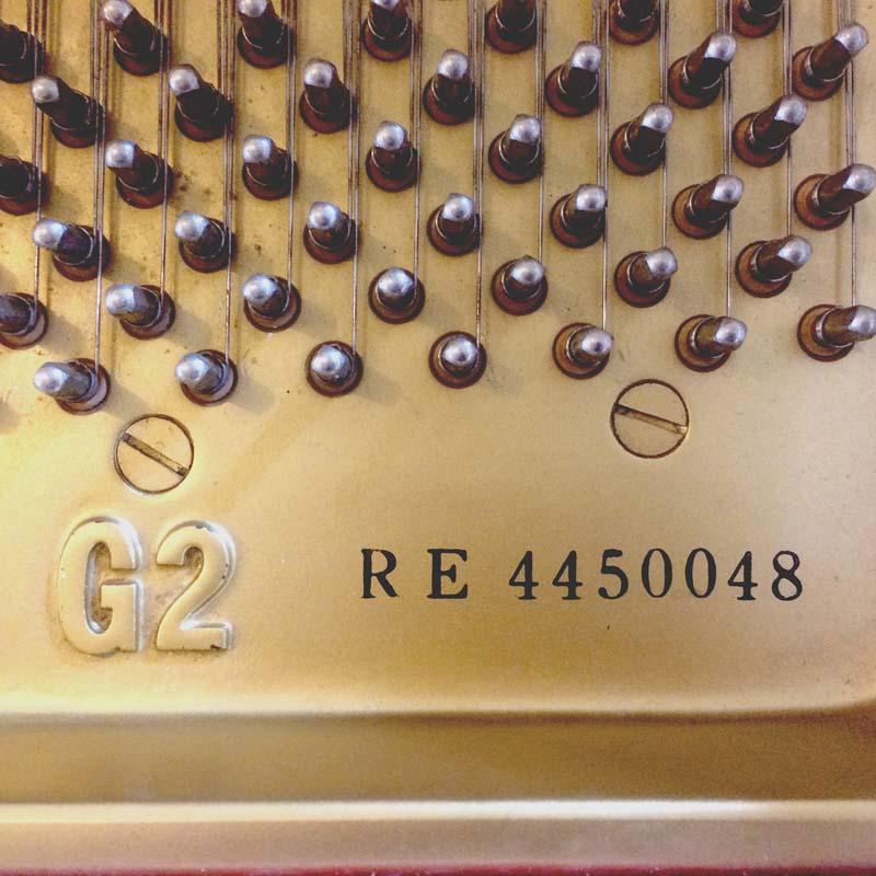 Yamaha G2 wit serienummer en type